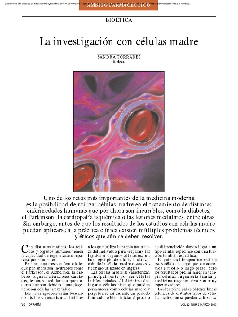 diabetes de investigación con células madre