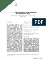 Asteraceas de Humedales Altoandinos