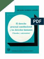 DERECHO_PROCESAL_CONSTITUCIONAL_Y_LOS_DERECHOS_HUMANOS__-_PDF.pdf