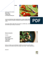 Sirovi-namazi.pdf