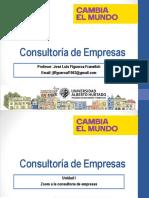 Zoom a La Consultoria de Empresas Profesor y Alumno