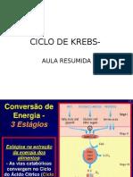 Aula Resumo Ciclo de Krebs