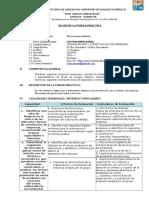 SILABOS ORGANIZACION Y CONSTITUCION EMP.docx
