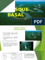 Selva Tropical (Ecosistemas Colombiano)
