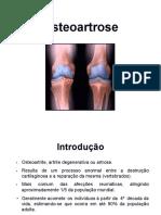 08.Osteoartrose