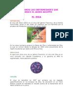 Conozcamos Las Enfermedades Que Produce El Aedes Aegypti 1