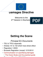 SP Adam Scott the Damages Directive