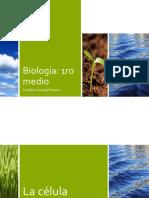 Biología 1ro Medio