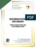 0253_AfricanCommissionSummaryversionPOR (1)