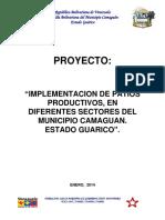 Alcaldia Del Municipio Camaguan Estado Guarico Proyecto Patios Productivos