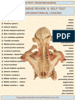 Lesions Study Guide (Key)