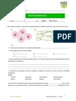 Ficha Avaliação Diagnóstica 1 c Soluções