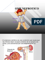 Sindrome Nefrotico y Nefritico 1