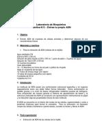 Guía de Laboratorio_n2extraccionadn