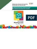 Reorganizacion Curricular Multigrado