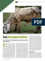 7-Salud Animal 128