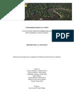 regimen de la amazonia.pdf