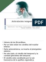Articulación temporomaxilar