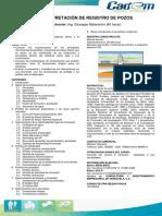 Interpretación-de-Registro-de-Pozos.pdf
