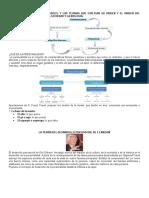 Las 4 Teorías del Desarrollo Huamano