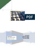Trabajo de Fundaciones y Muros Fundaciones Superficiales