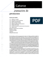 Cap_Programacion_de_Proyecto.pdf