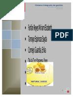 Proyecto de implementacion del sistema integrado .docx