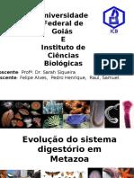 Apresentação Zoologia I