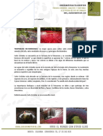 Caño-Cristales-Clientes-tarifas-2015.pdf