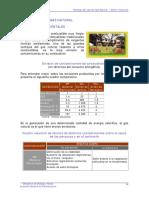 Ventajas Del Gas Natural[1]