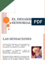 El Desarrollo Sensorial