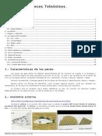 B-2 Biología Peces Teleosteos 14-15