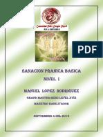 Sanacion Pranica 1