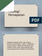 Fisiologi Pernapasan