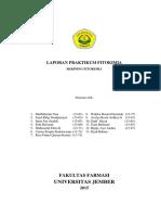 LAPORAN_SKRININGfix.pdf