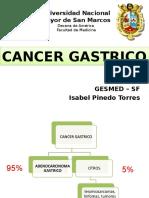 CA Gastrico ,Añuu