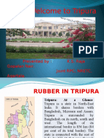 Rubber In Tripura ---Joint RPC.pptx