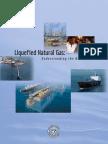 LNG_primerupd.pdf