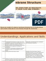 1.3 - Membrane Structure
