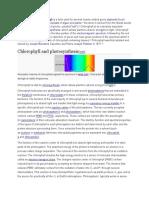 Chlorophyl l
