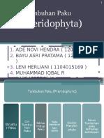 PTERIDOPHYTA 1