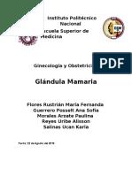 Gland. Mamaria