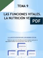 tema9-lasfuncionesvitales-lanutricinvegetal
