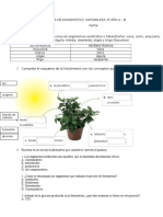 PRUEBA DE NATURALEZA 7º Año A.doc