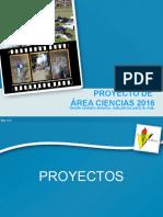 Proyecto de Área, Proyectos, decisiones toma de