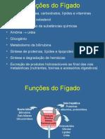 Aula Fígado1(2)