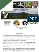 Ecuador orquideas.pdf