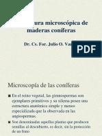MicroscopiaDeLaMaderaDeConiferas2-10.pdf