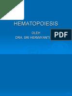 39559475-dr-herwiyati-HEMATOPOIESIS.ppt