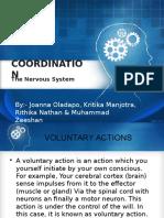Nervous System BIOLOGY